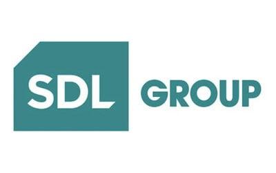 01_SDLGroup